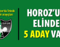 Denizlispor'un 5 alternatifi var